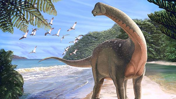 """اكتشاف الديناصور """"منصوراصورس"""" في مصر"""