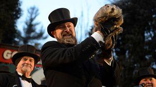 « Jour de la Marmotte » à Punxsutawney