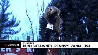 Día de la marmota en Punxsutawney: seis semanas más de invierno.