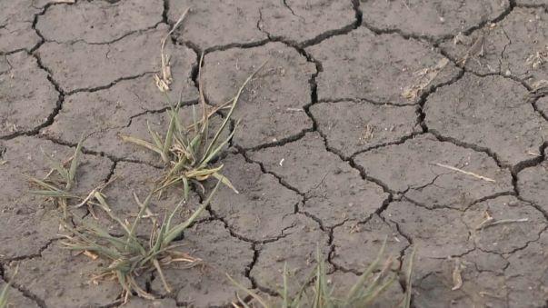 Ciudad del Cabo a punto de quedarse sin agua
