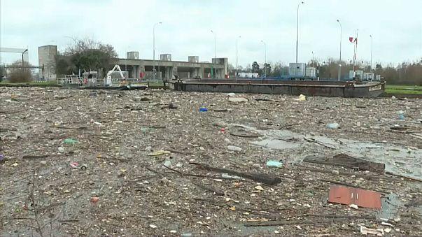 Toneladas de lixo flutuam no Sena