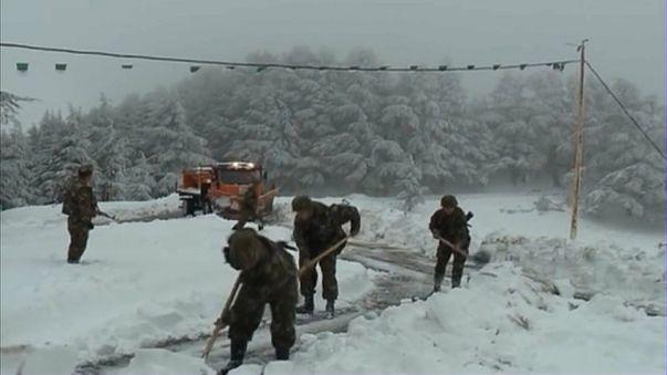 L'armée algérienne à l'assaut de la neige