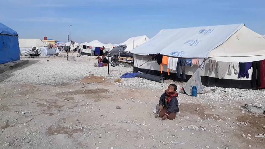 """""""Сирийцам рано возвращаться на родину"""""""