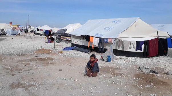 Mois de janvier sanglant en Syrie, l'appel des ONG
