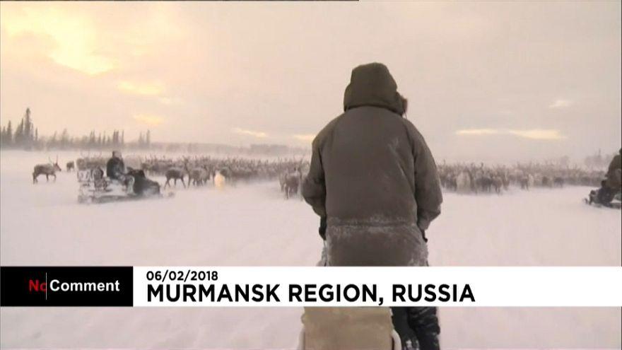 International Saami Day celebrated