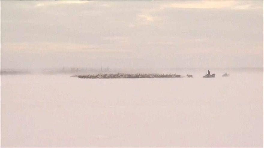 Internationaler Sámi-Tag
