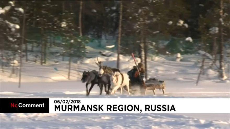 Dia Internacional do povo sami