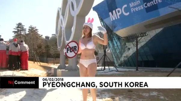 Bikinis állatvédők a téli olimpián
