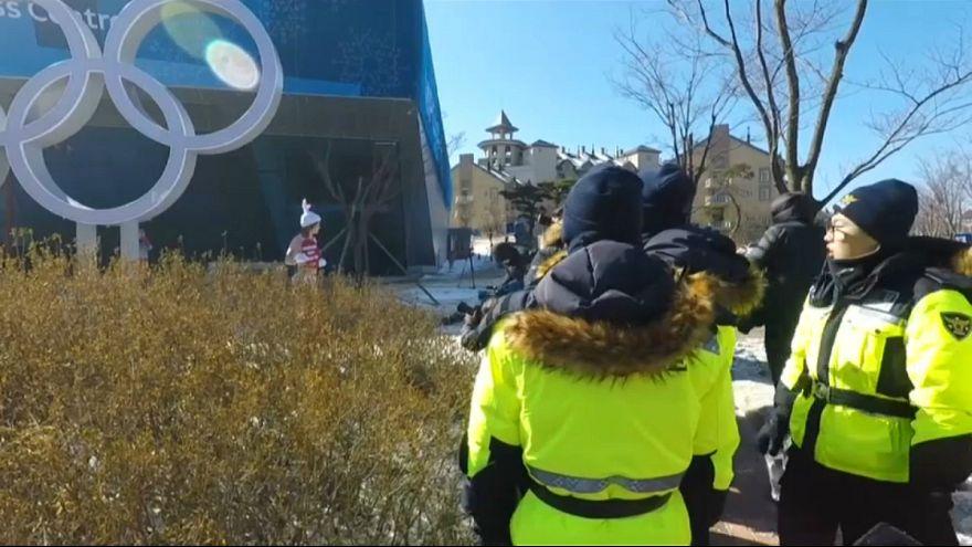 بازی های المپیک زمستانی؛ تبلیغ با بیکینی برای حقوق حیوانات
