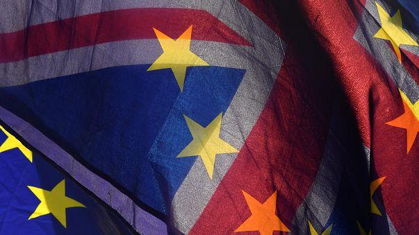 Brits in the Netherlands win bid to take EU citizenship case  to ECJ