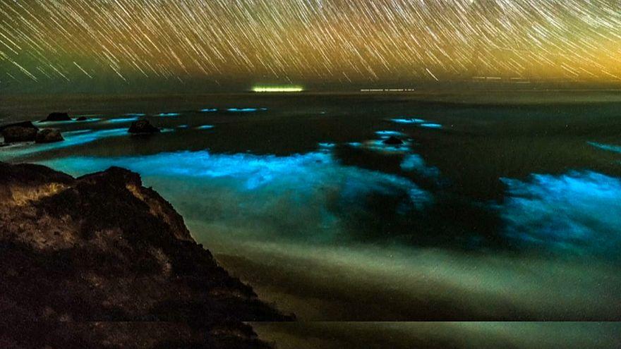 El espectáculo de la luminiscencia en la costa de California