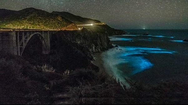 Fluoreszkál a tenger Kaliforniában
