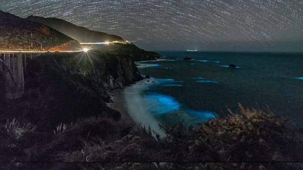 Glowing phytoplankton light up California coast.