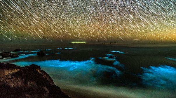 Vagues bioluminescentes en Californie