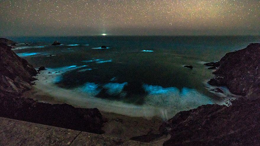 Phytoplankton leuchtet in den Wellen vor Big Sur.