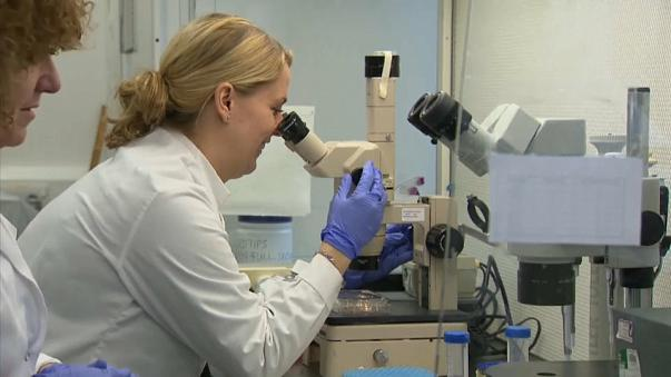 Óvulos humanos desenvolvidos em laboratório