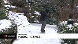Paris aux sports d'hiver