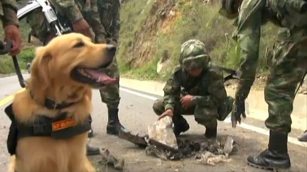 Колумбия: мирный процесс под угрозой