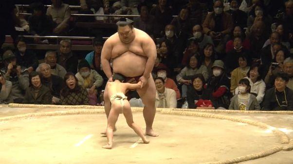 Luchadores contra aprendices de sumo en un acto solidario