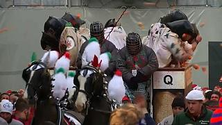 "El ""jugoso"" carnaval de Ivrea"
