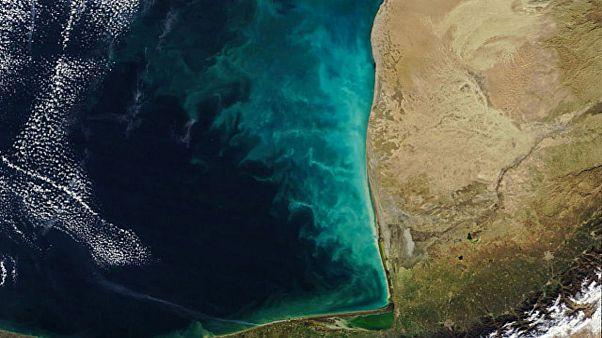 گرداب شیری در دریای خزر