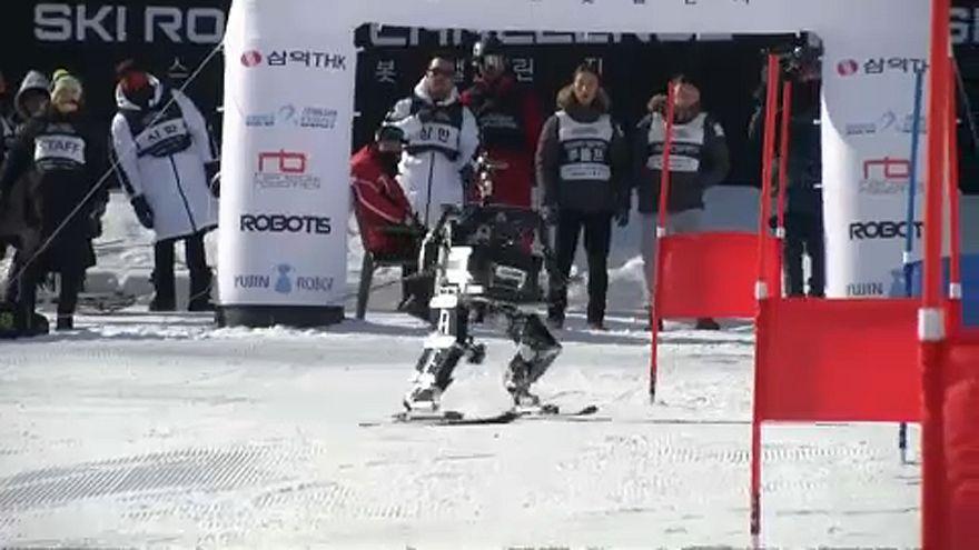 Robotsízők versenye