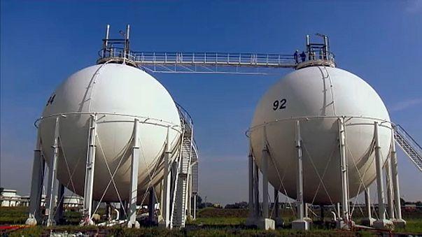 Milliós csalás a BASF-nél