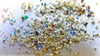 Microplásticos contaminan hasta las partes más remotas del océano, advierten científicos