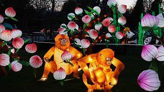 Tiere aus Lampions zum Chinesischen Neujahr