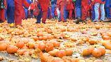 180 Verletzte bei Orangenschlacht in Norditalien