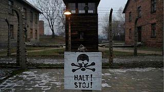 Legge sull'Olocausto, la Polonia lancia campagna social #GermanDeathCamps
