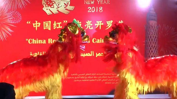 Le nouvel an chinois, sous le signe du chien