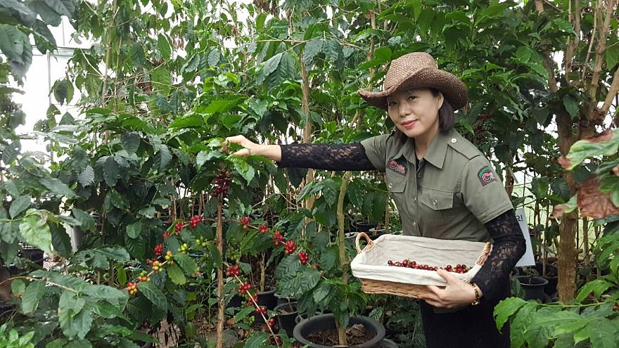 Meet the queen of the coffee capital of South Korea