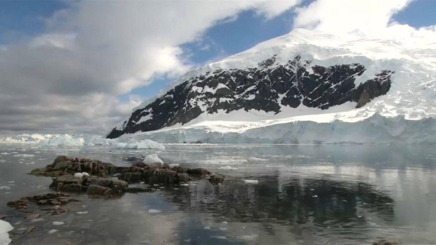 """""""Гринпис"""" готовит заповедник в Антарктике"""
