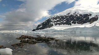 Greenpeace quiere un santuario marino en aguas de la Antártida