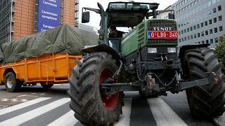 Les subventions agricoles en danger?