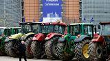 Σκέψεις περικοπών του μπάτζετ για την Κοινή Αγροτική Πολιτική