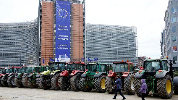 Gazdák tiltakoztak hétfőn Brüsszelben a tervezett megszorítás miatt