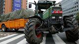 خطر حذف برخی یارانههای کشاورزی اروپا برای جبران کاهش بودجه ناشی از برکسیت