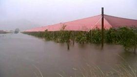 "Zyklon ""Gita"" verwüstet Neuseeland"