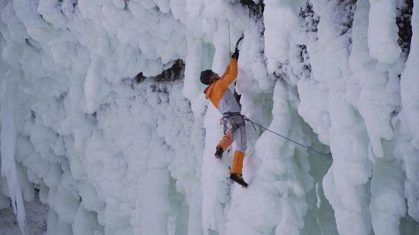 Schrimps in luftiger Höhe - neue Kletterstrecke in Kanada eröffnet