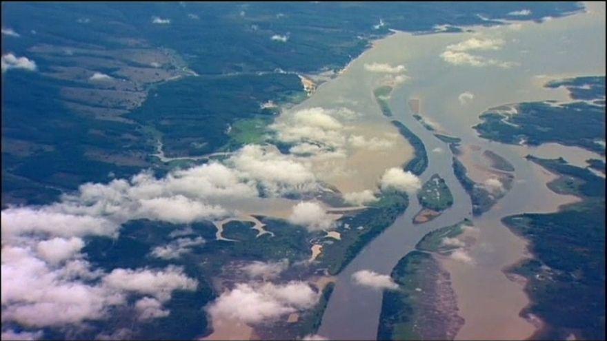 """Amazzonia: se la deforestazione continua si rischia un """"baratro climatico"""""""