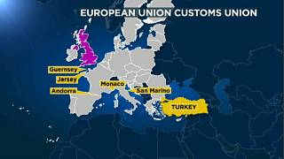 Why have a customs union?
