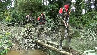 ELN rebels call election ceasefire in Colombia