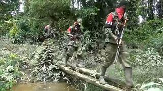 Békében várják a választásokat a kolumbiai gerillák