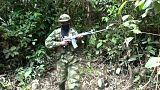 """Colombie : cessez-le-feu de l'ELN par """"respect envers les électeurs"""""""