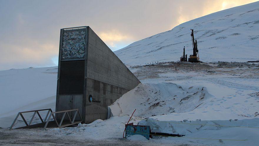 """Portugal envia sementes de milho para a """"Arca de Noé"""" norueguesa"""