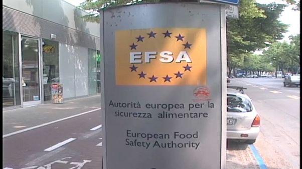 EFSA: tre pesticidi nocivi per le api