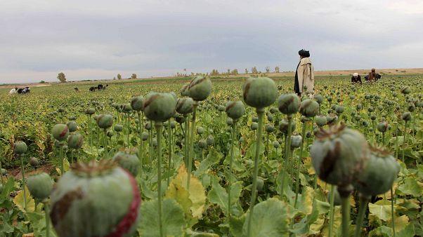 Afghanistan: Deutscher Taliban-Kämpfer festgenommen