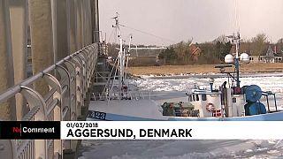 Balıkçı teknesi köprüye çarptı